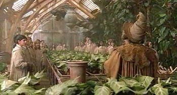 Greenhouse Academy Emma
