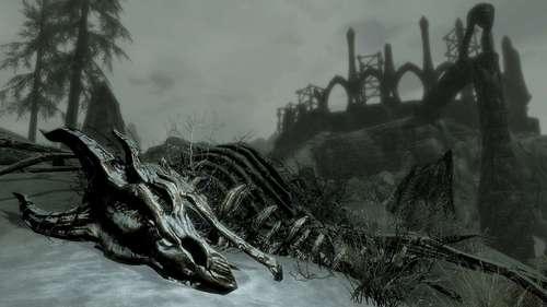 dragon%20bones.jpg