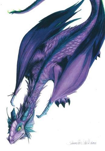 Purple%20Dragon.jpg